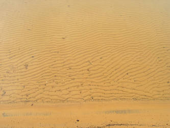 Underwater Dunes