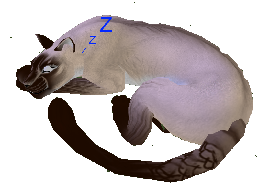 Kitteh sleeping by NightshadeTheLeopard