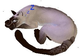 Kitteh sleeping by NightshadeTheLeopard