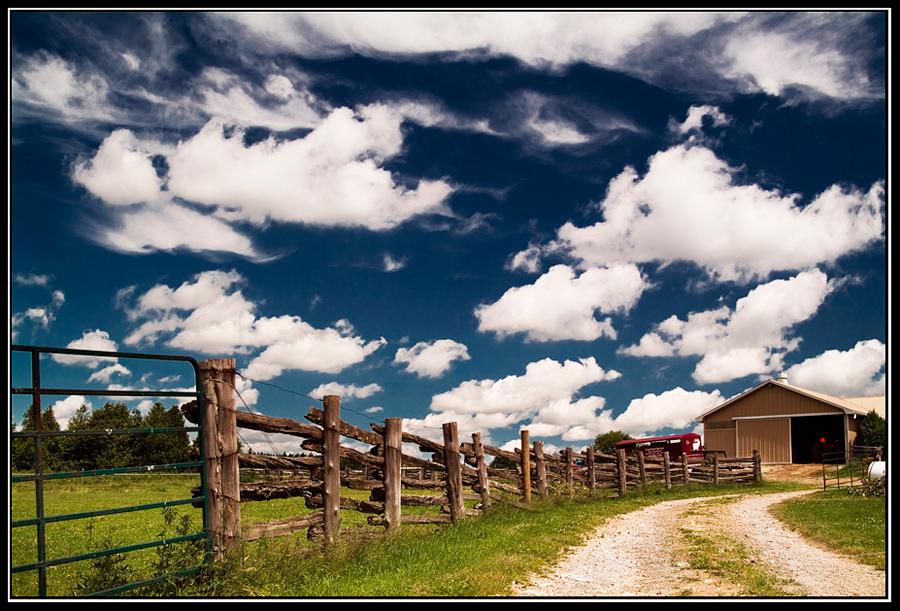 Summertime in Ontario by IgorLaptev