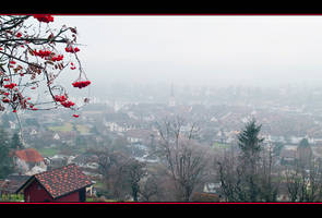 Winter in Switzerland by IgorLaptev