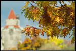 Fall at Casa Loma by IgorLaptev