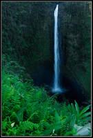 Akaka Falls by IgorLaptev