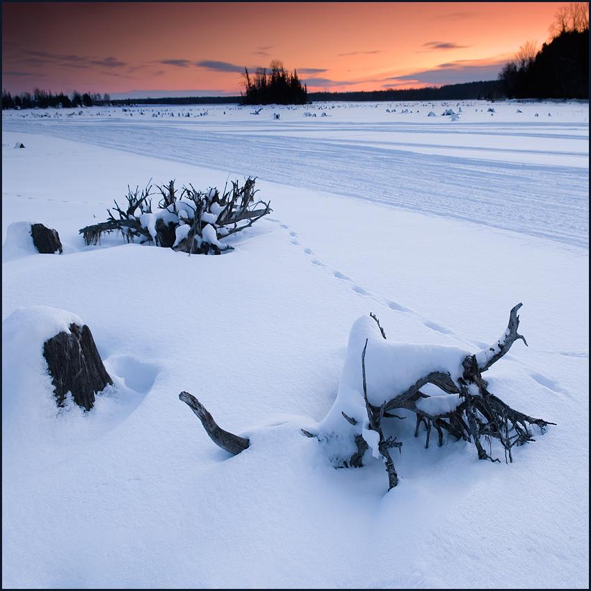 Winter in Ontario by IgorLaptev