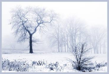 Foggy December by IgorLaptev