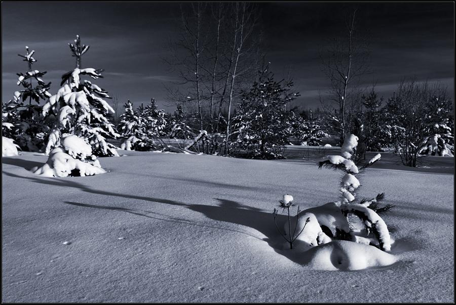 Winter in Huntsville by IgorLaptev