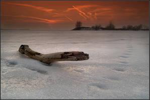 Frozen by IgorLaptev