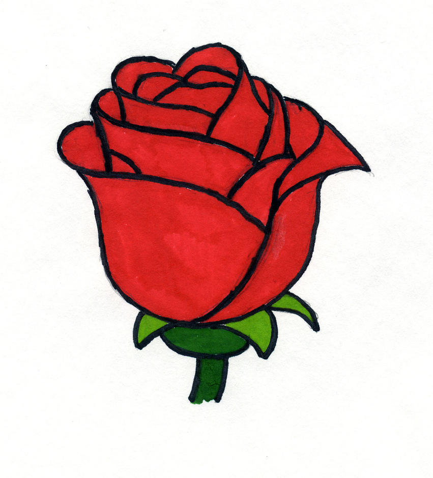 Enchanted Rose Drawing: The Enchanted Rose By Musicscifigirl On DeviantArt