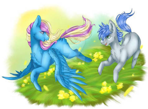rainbow dream and silver spirit playing