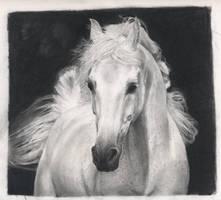 Sepia Horse by lopli
