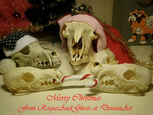 The skulls wish you a scary Christmas!