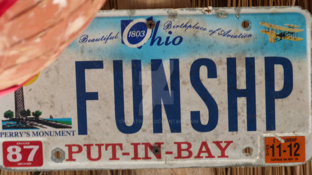 Ohio License Plate 2