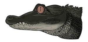 American alligator by MechanicalFirefly