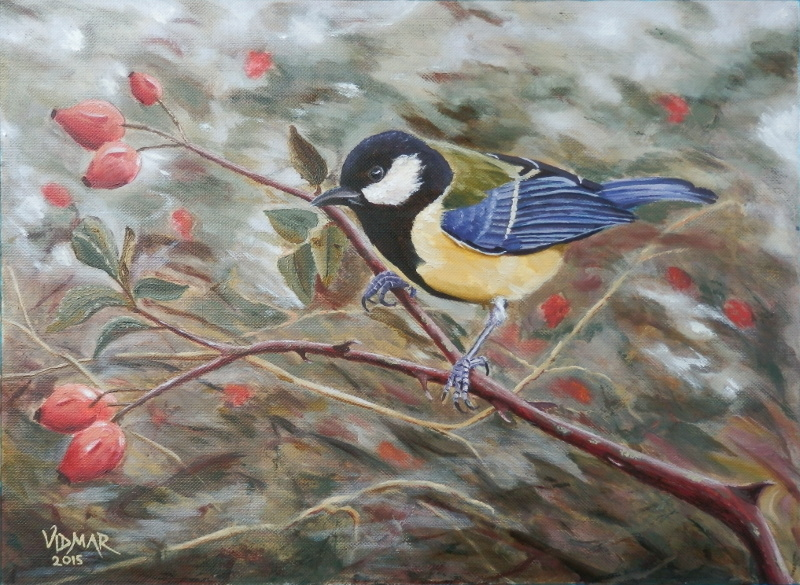 Great Tit on a Dog-Rose Branch by agapetos