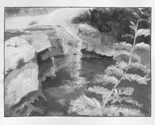 Cascade on the Dragonja River by agapetos