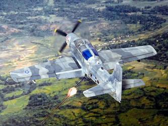 Douglas YOA-1E 'LAGOS Skyraider' USN VA-33 Viet 68 by Sport16ing