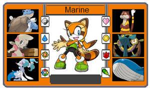 Pokemon Trainer Card - Marine the Raccoon
