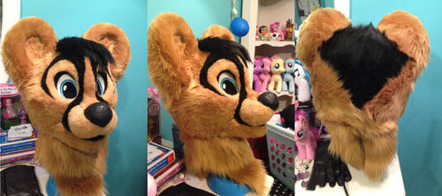 Completed 13 Fursuit Head