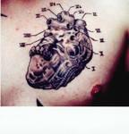 bio-heart
