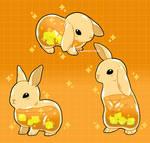 Pumpkin spice bunnies