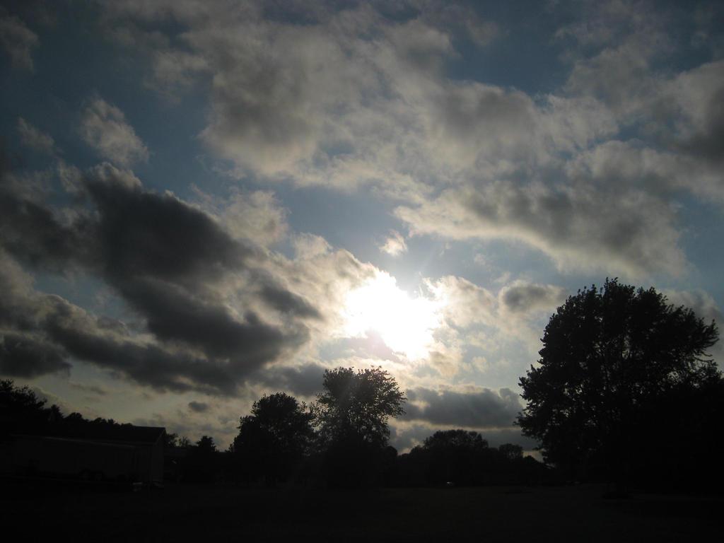 Sun Shining Through by CassieBugg