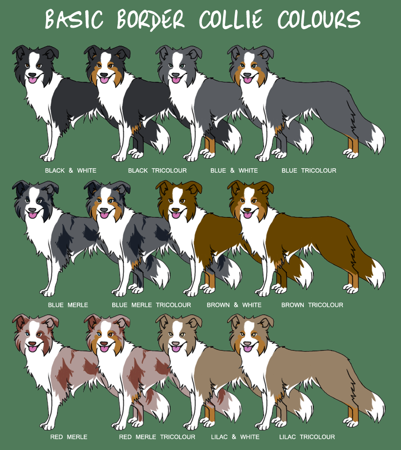 Good Solid Dog Names