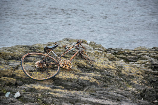 Washed Up Bike