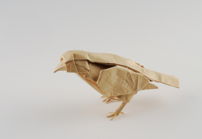 Little Bird by Dreams-Made-Flesh