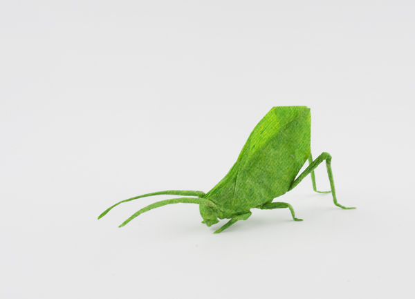 Leaf Katydid Reshaped by Dreams-Made-Flesh