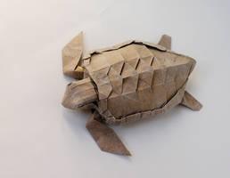 Loggerhead Sea Turtle by Dreams-Made-Flesh