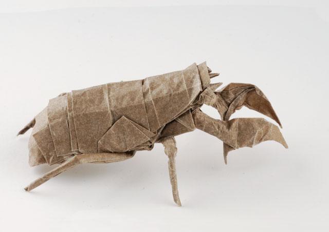 Cicada Nymph Opus 588 by Dreams-Made-Flesh