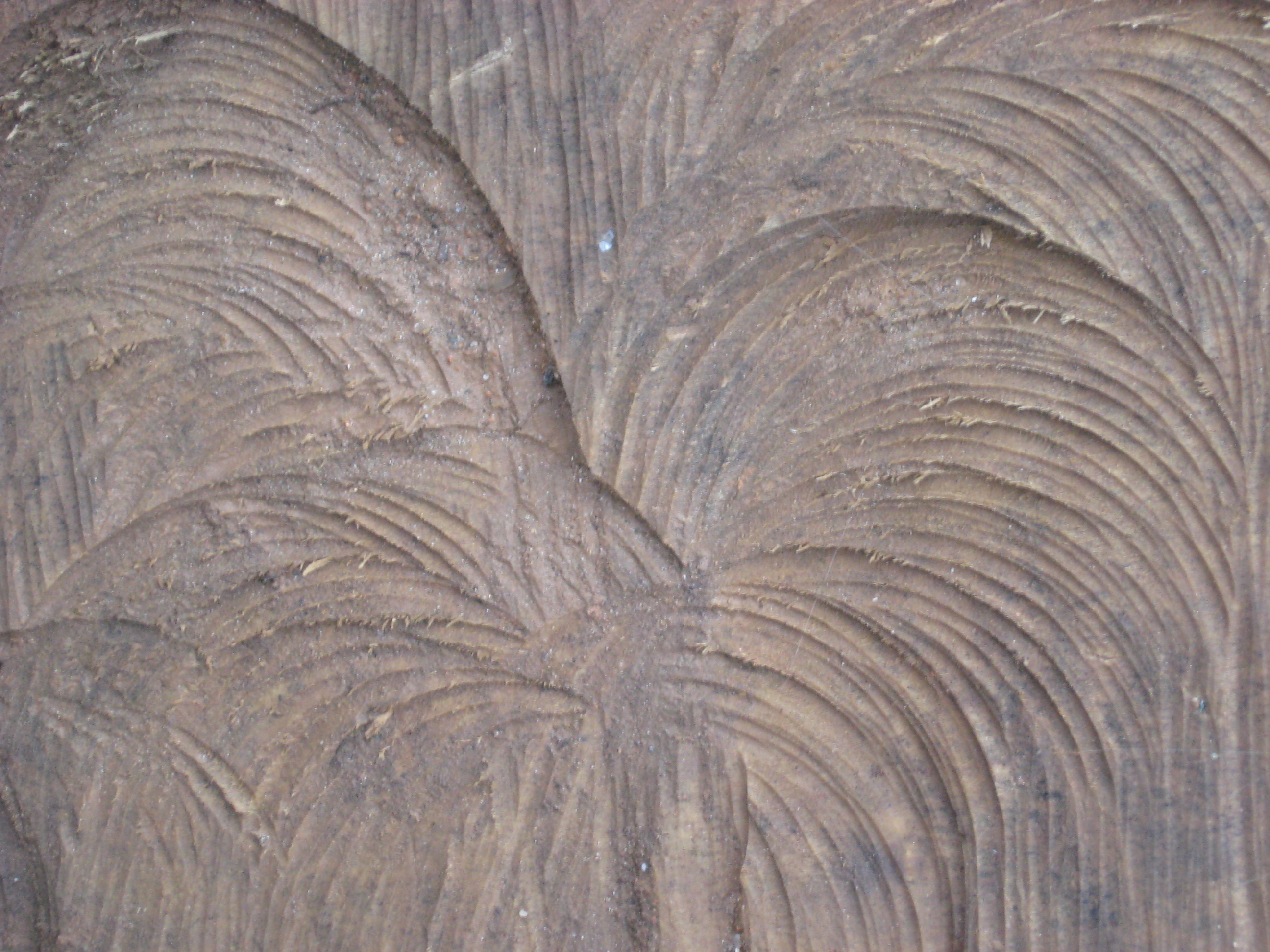 Texture Sawn Wood by markopolio-stock