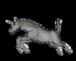 Animal - Unicorn Leap