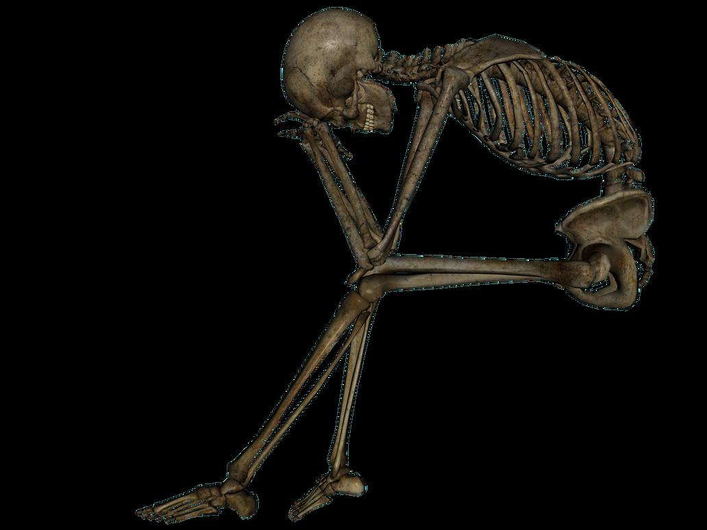 Human bones png - photo#15