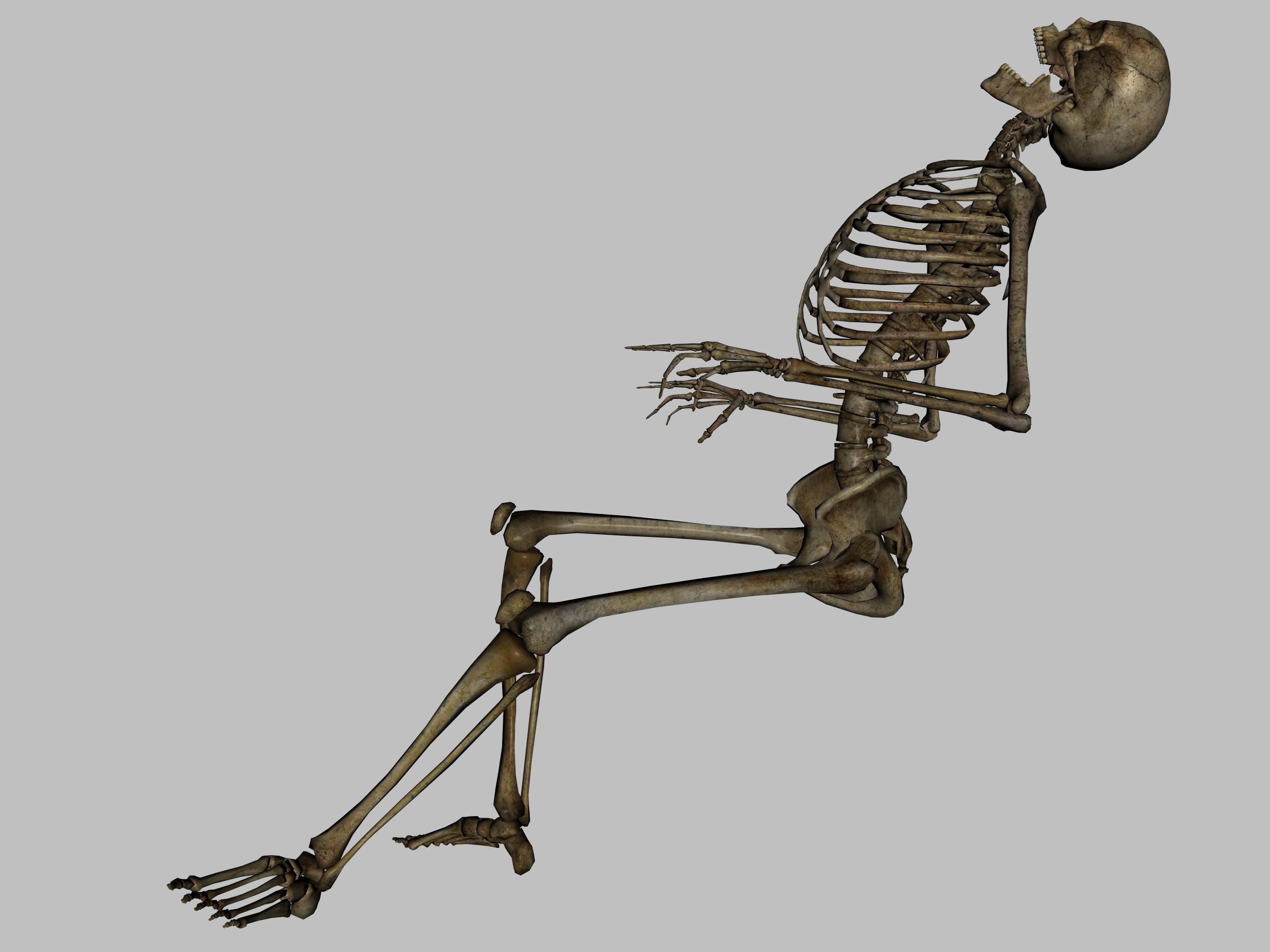 Skeleton Dead - JPG by markopolio-stock