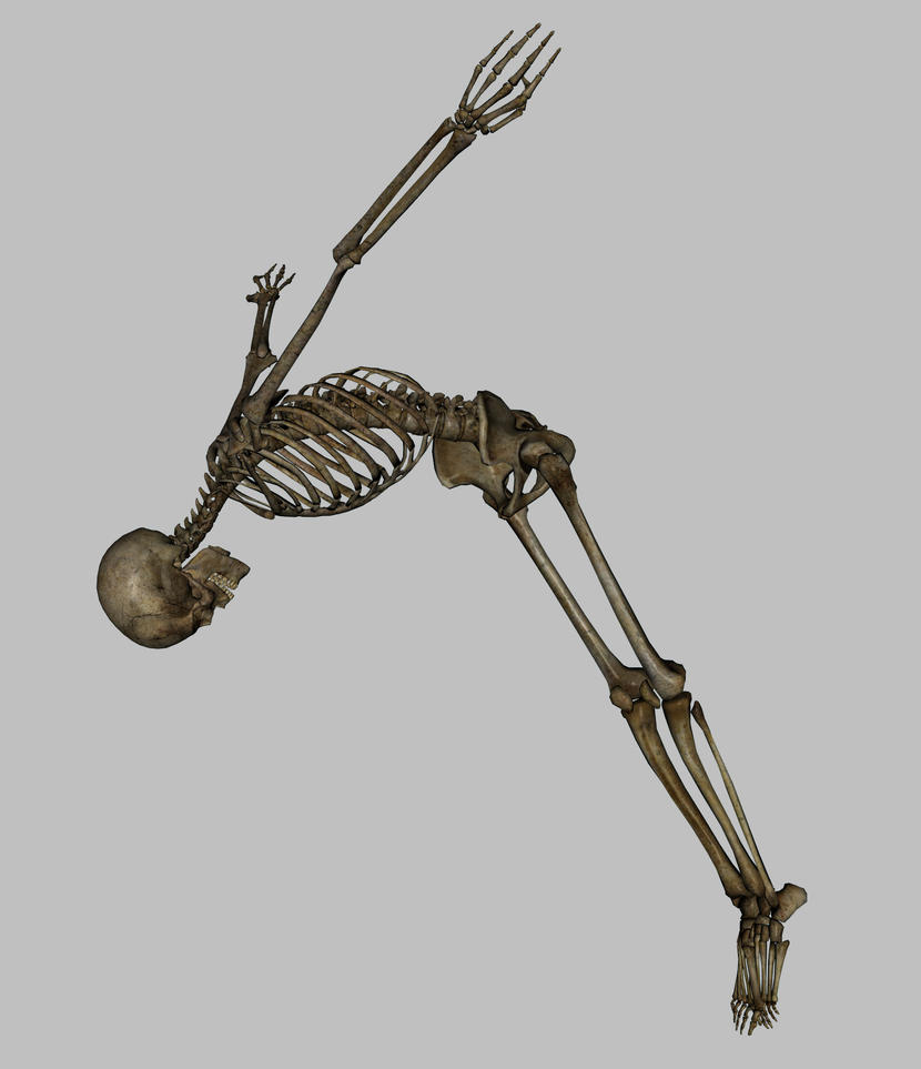 Skeleton - Swan Dive - JPG by markopolio-stock