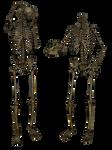 Skeleton - Head Trade 3- PNG