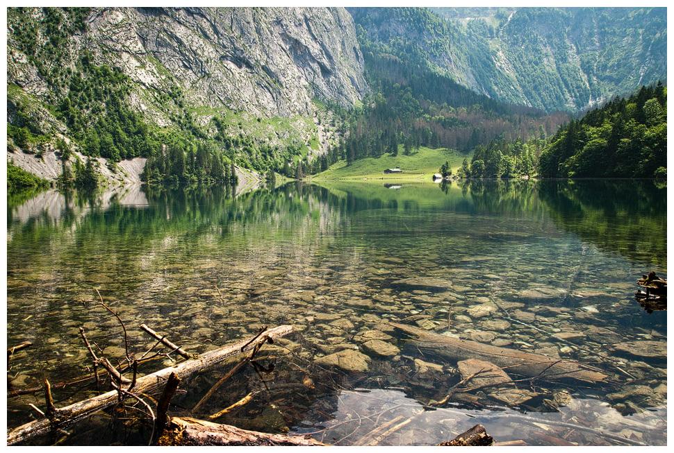 Obersee by sputnikpixel