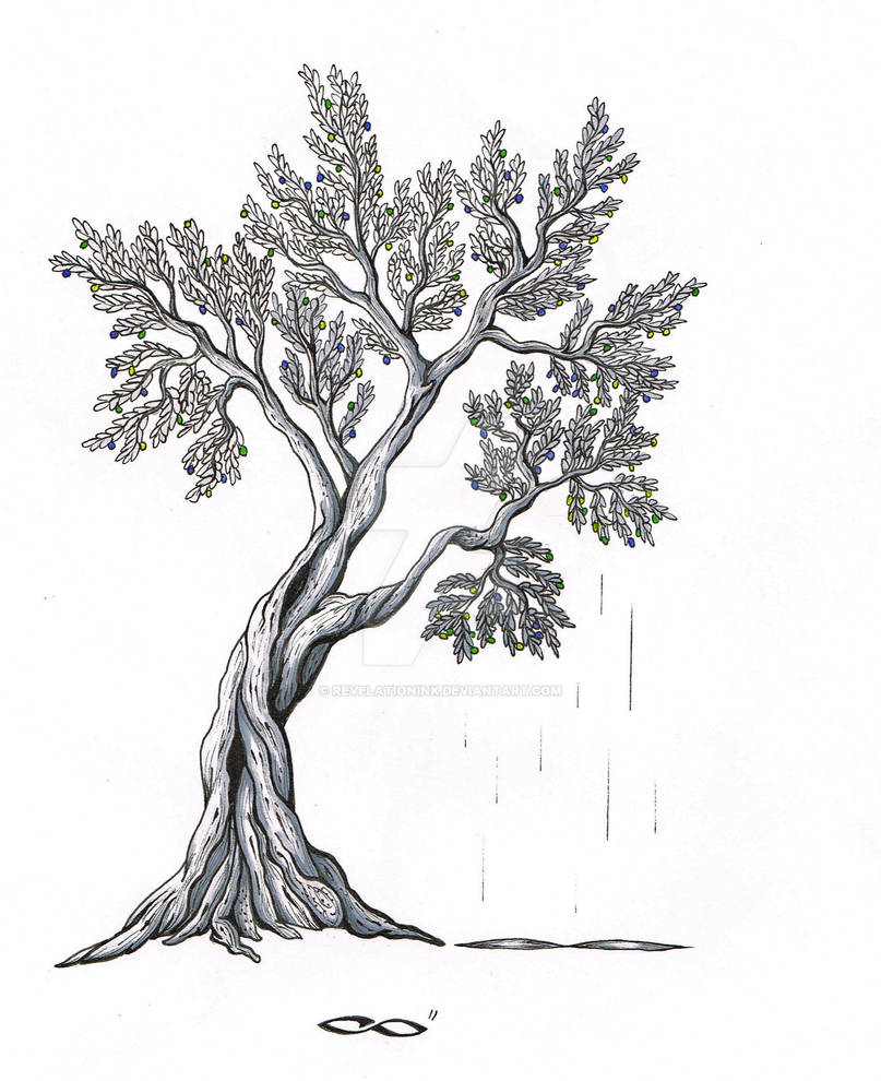 Olive Tree by RevelationInk on DeviantArt