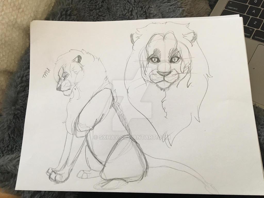 King Tau Sketches