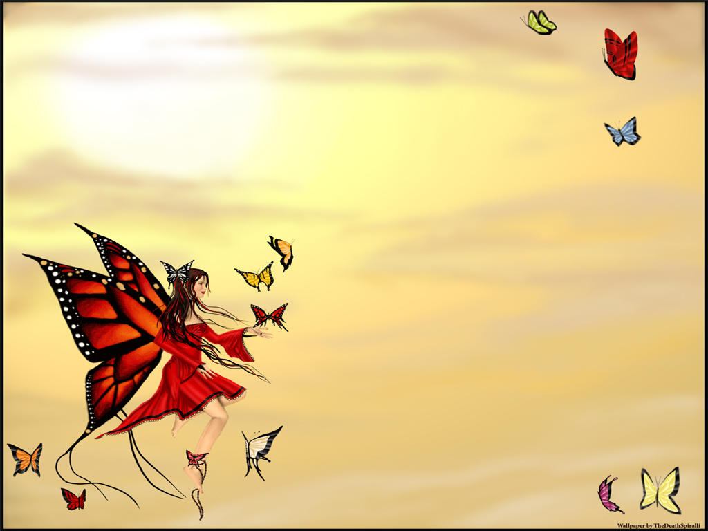 Best Butterfly Background for Desktop