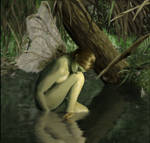 Lonely Swamp Faerie
