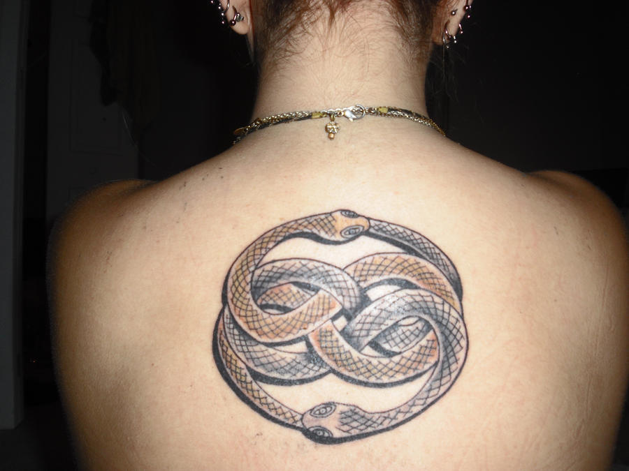 http://fc01.deviantart.net/fs51/i/2009/285/7/d/The_Auryn_Tattoo_by_MyPinkElephants.jpg