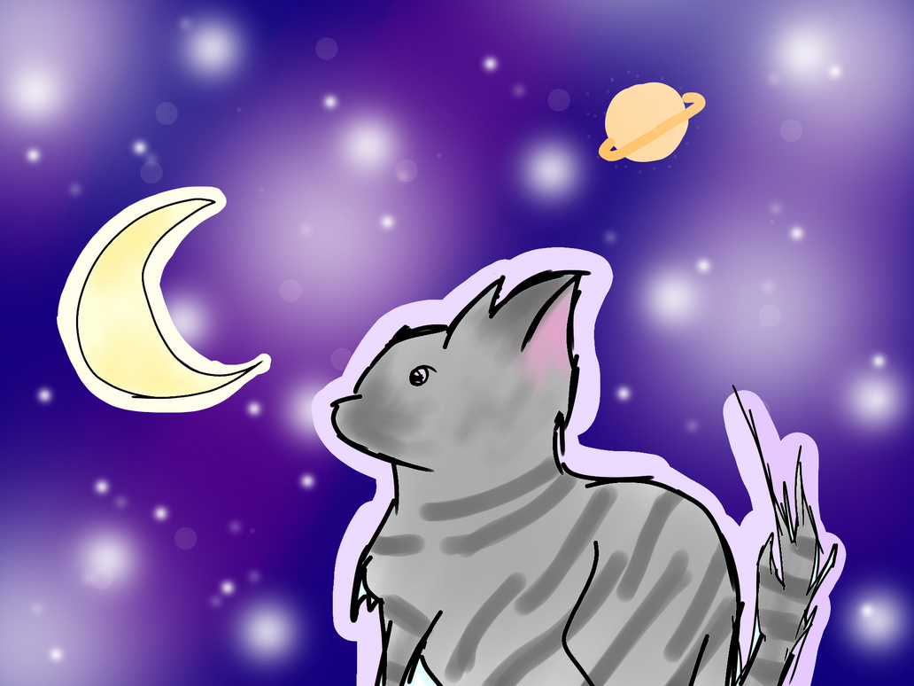 Starry Cat by BasilAroma