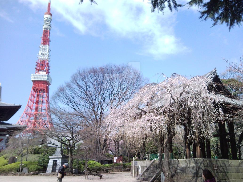 Tokyo Tower from Zoujou-ji by Daiyoukai-sama