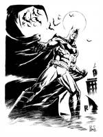 The Batman by ronsalas