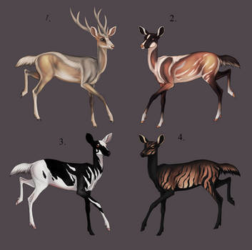 Doe Adopts [Open]