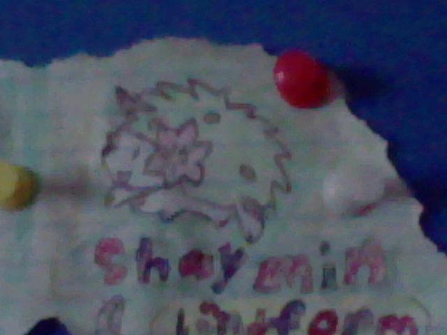 Hand drawn shaymin by fanis01