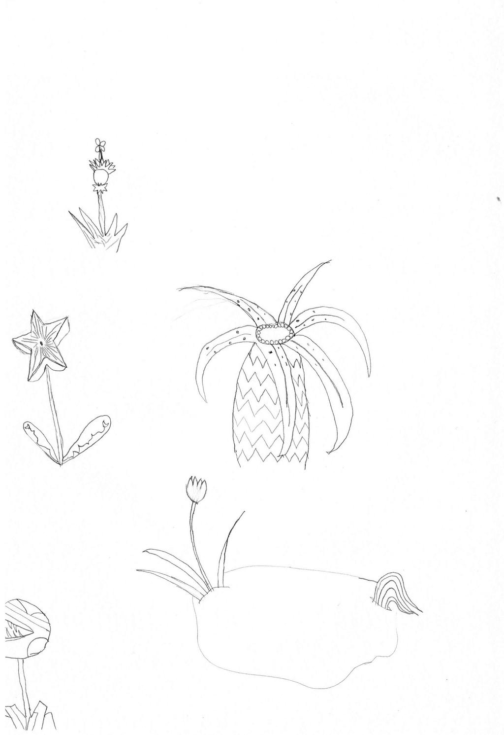 Fairy-world Drawings plants (B and W) by fanis01