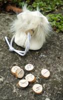 White Wolf Runes by UrnesAshTree